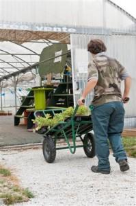 Lycée professionnel agricole La Cadene à Labège (31) Apprentis d'Auteuil - métiers verts